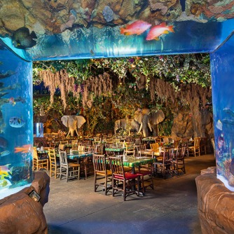 rainforestcafe_detail_01
